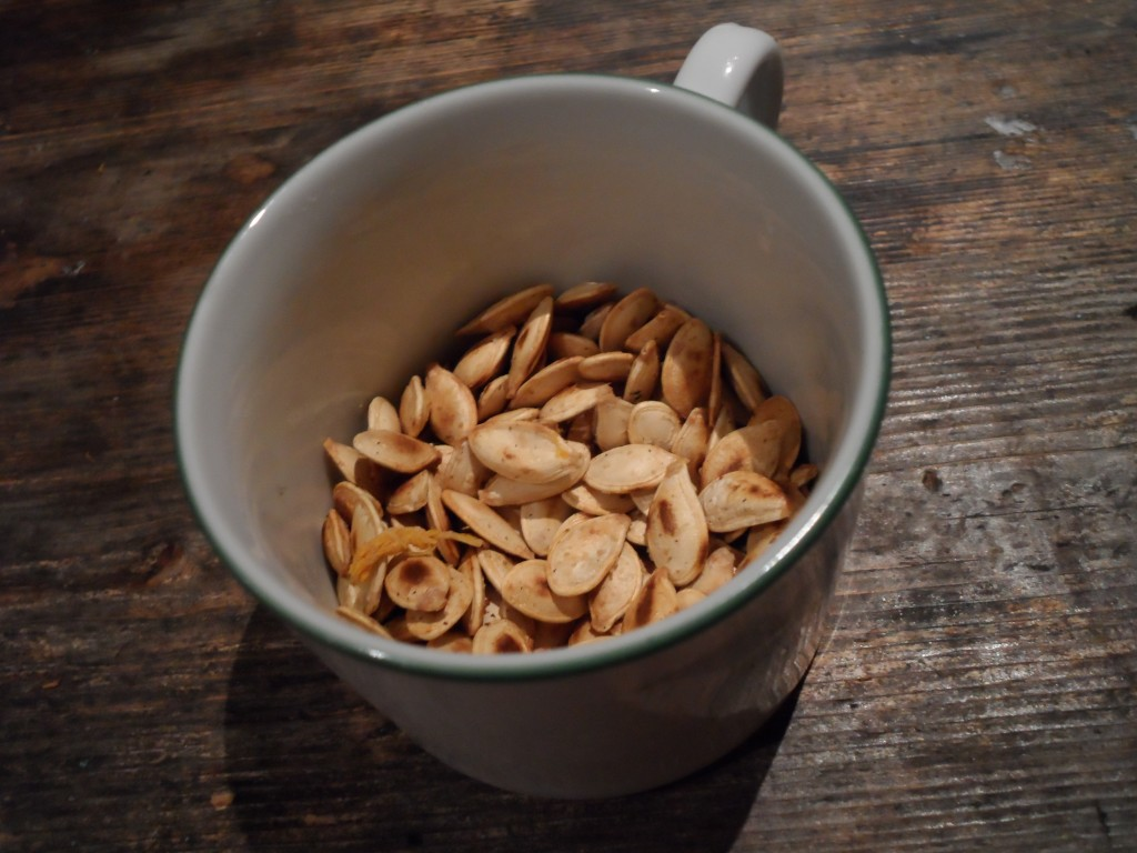 artistically photographed and arguably pretentious pumpkin seeds
